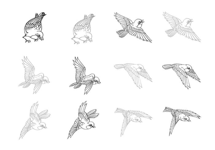 Dibujado a mano Flying Bird Vector Pack