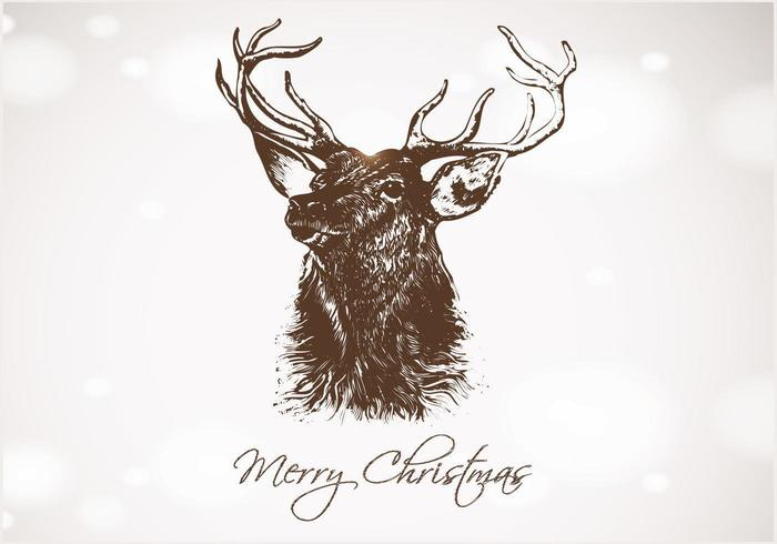 Bokeh Hand Drawn Deer Christmas Vector