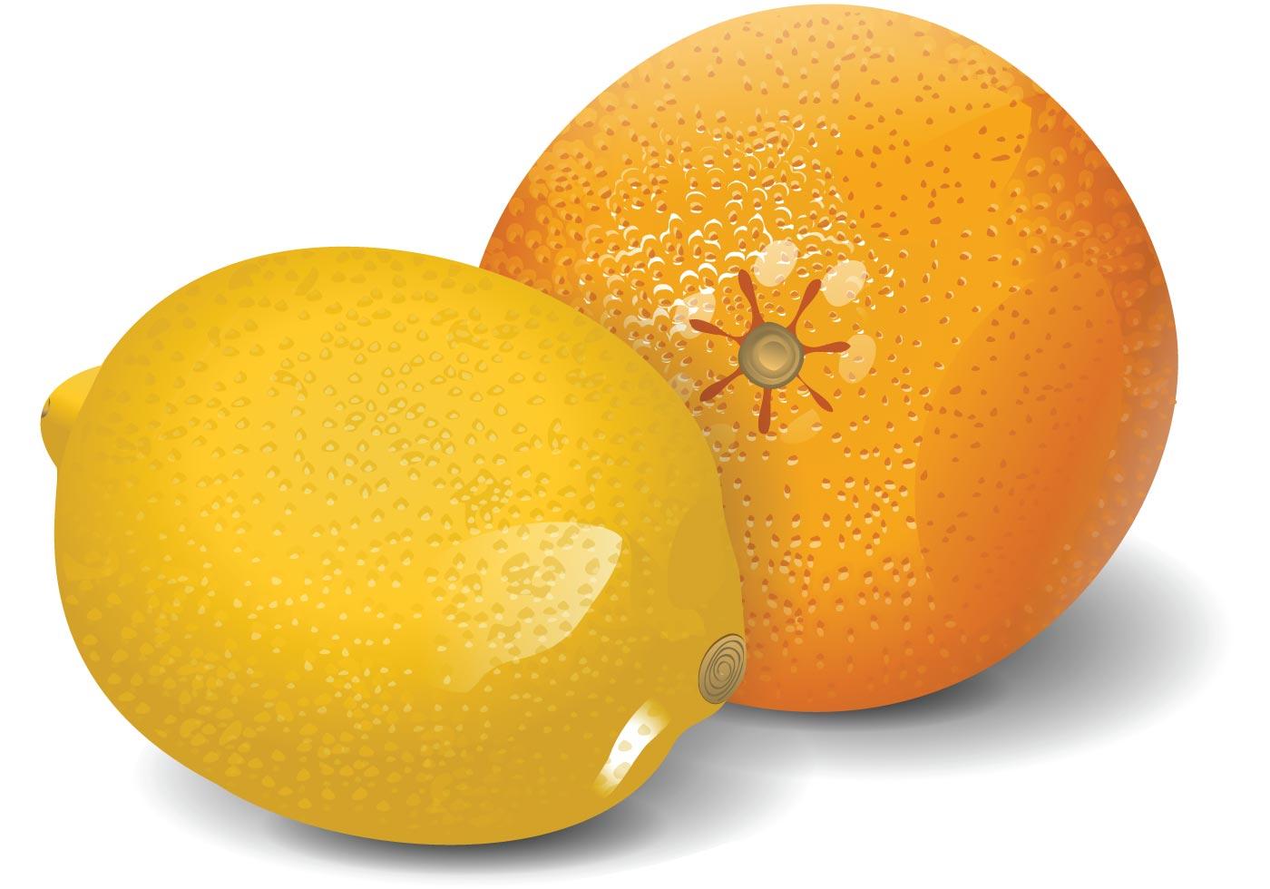Orange And Lemon Cake Decorations