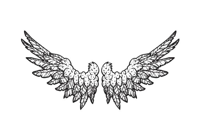 Hand Drawn Wings
