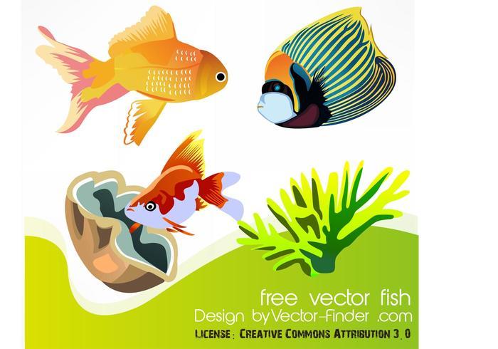 Free Vector Fish