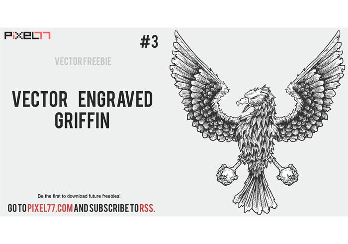 Eagle Griffin Vector