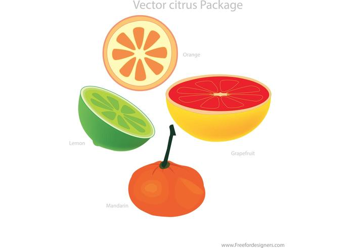 Vector Citrus Package