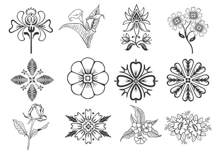 Floral Design Elements Vector Pack