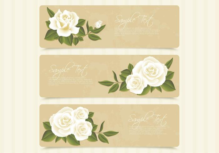 Retro White Roses Banner Vector Set