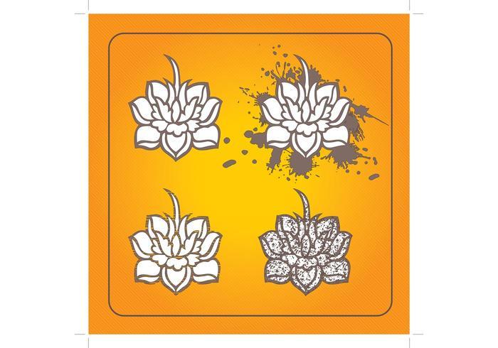 Lotus Blumen