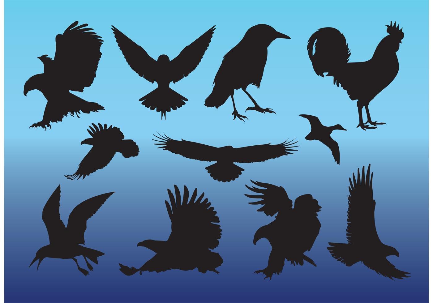 Free Birds Vectors - Download Free Vector Art, Stock ... - photo#32
