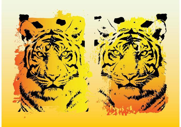 Tigers Vector Graphics