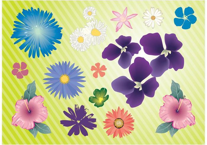 Garden Flowers Vector