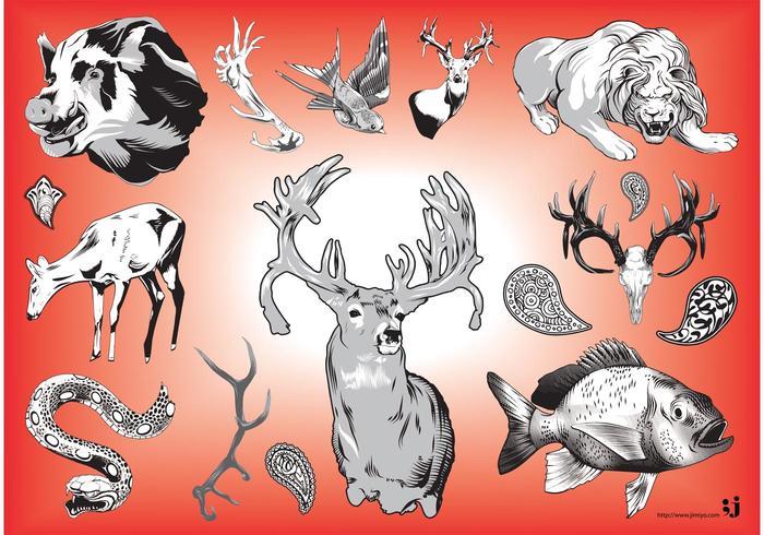 Wildlife Vector Graphics