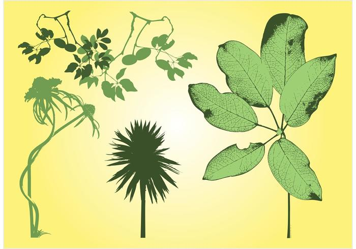 Free Plants Stock