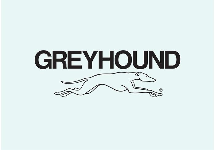 Greyhound Download Free Vector Art Stock Graphics Images