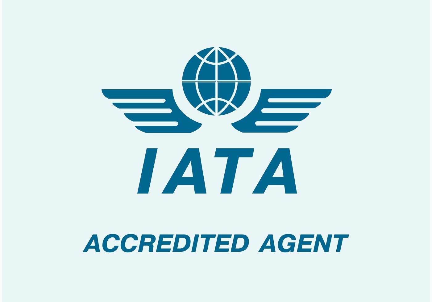 International Air Travel Association
