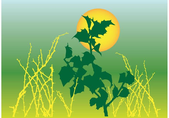 Foliage Graphics