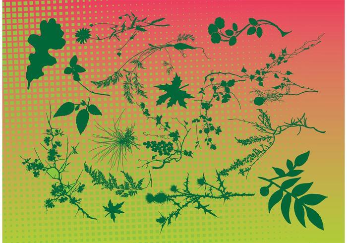 Free Leaf Vectors