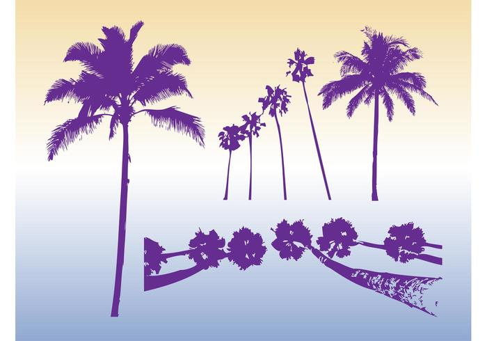 Palm Trees Silhouettes