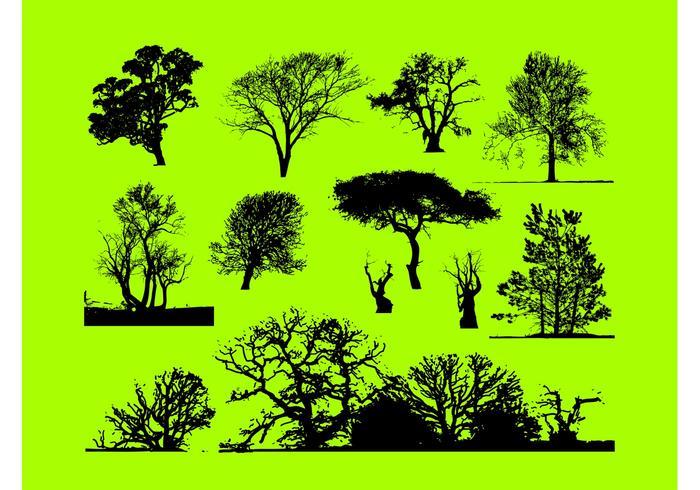 Trees Graphics