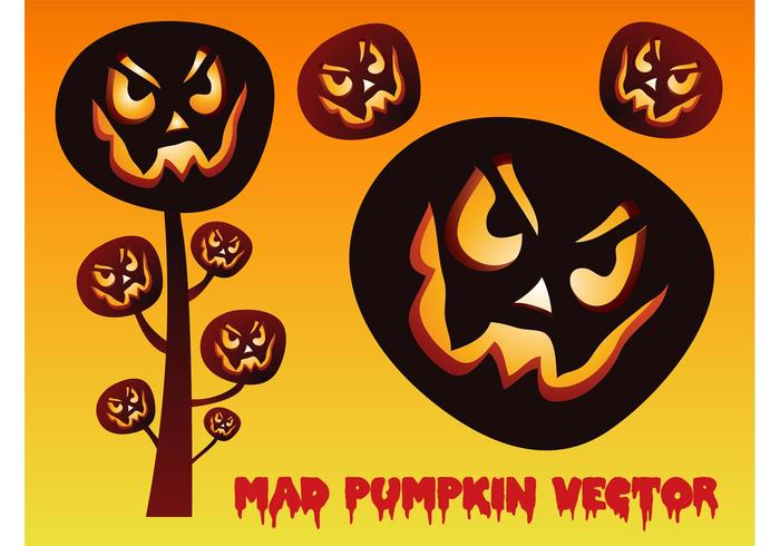 Pumpkin Vectors