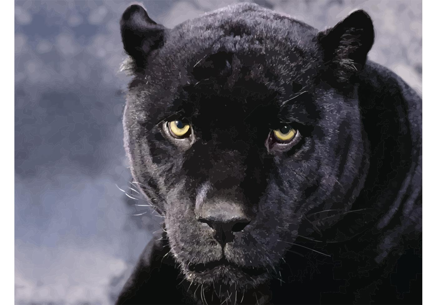 Black Panther Image - Download Free Vector Art, Stock ... - photo#35