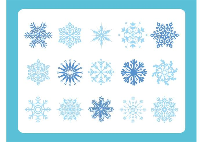 Snow Flake Variety