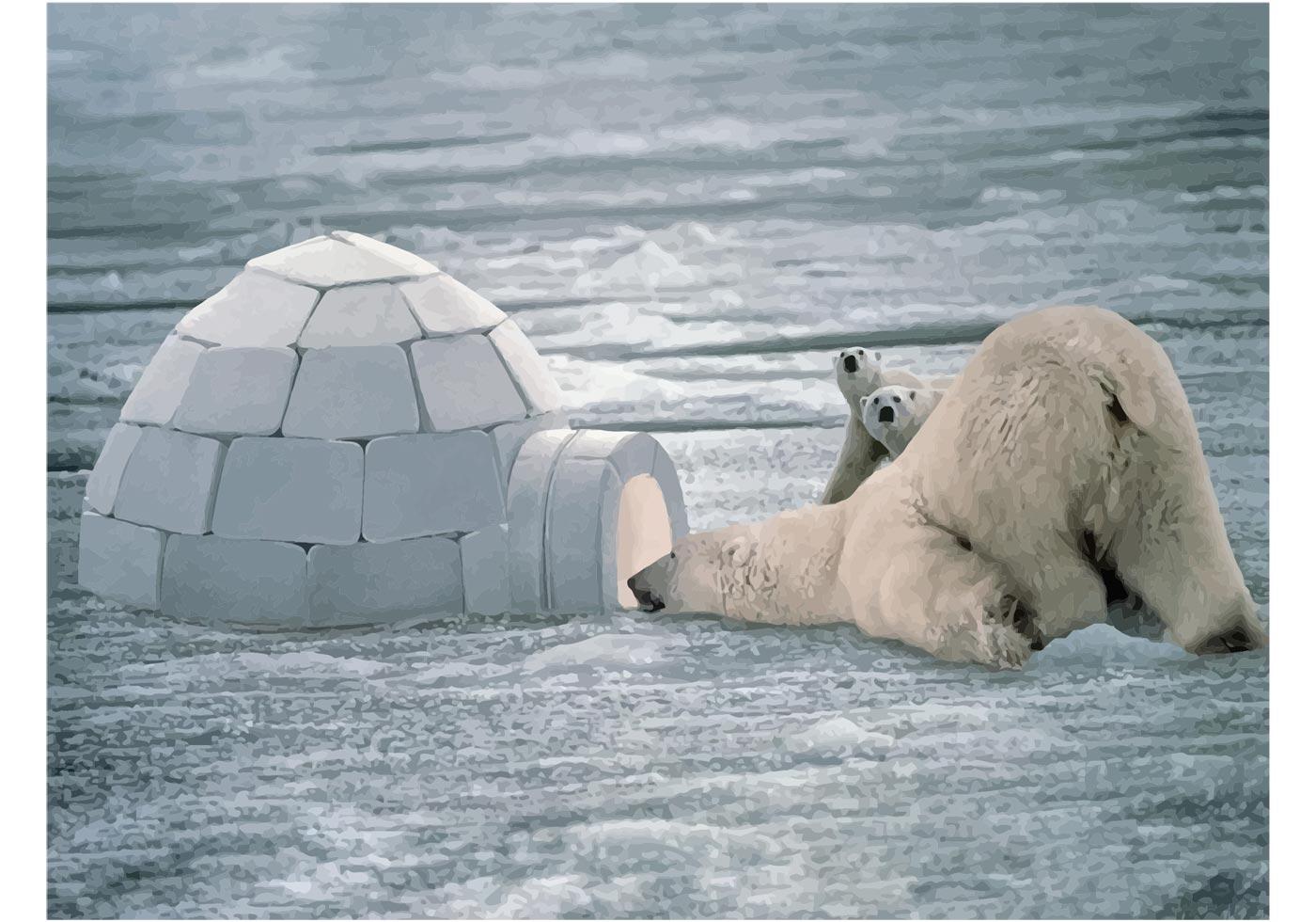 Funny Polar Bear Download Free Vector Art Stock