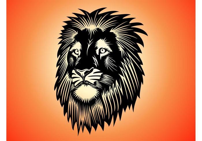 Lion Head Graphics