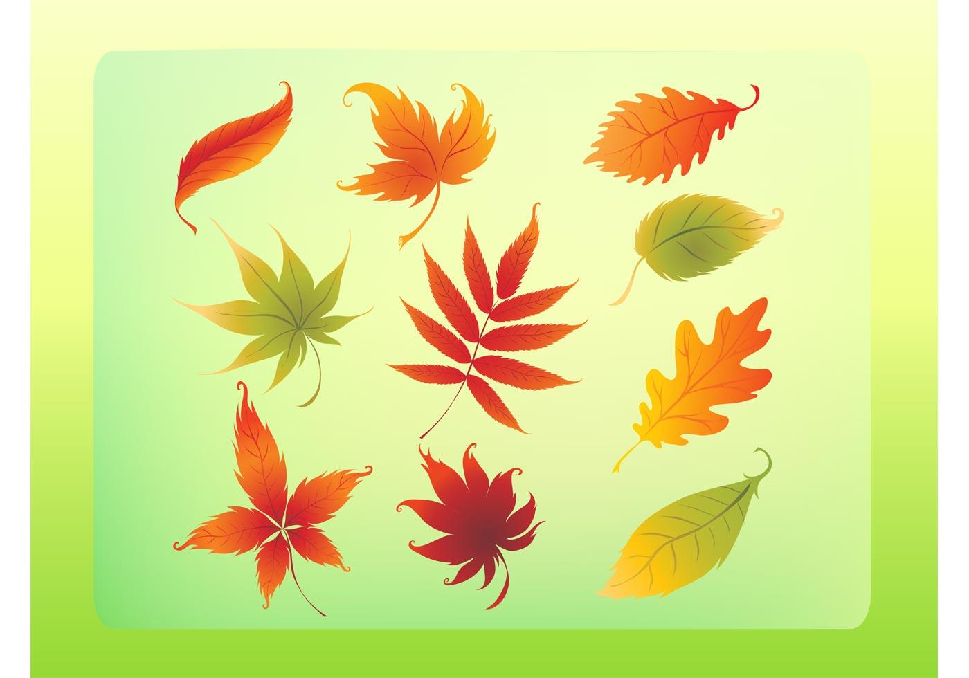 Autumn Leaves Vector Set Download Free Vector Art Stock