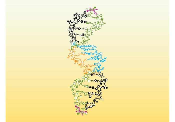 Colorful DNA