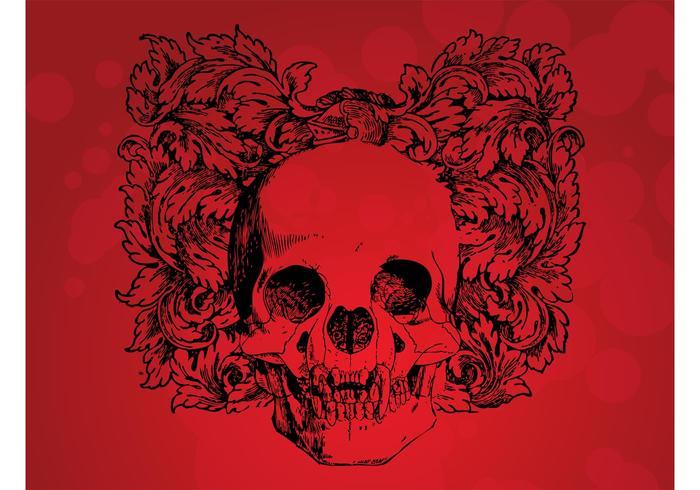 Antique Skull