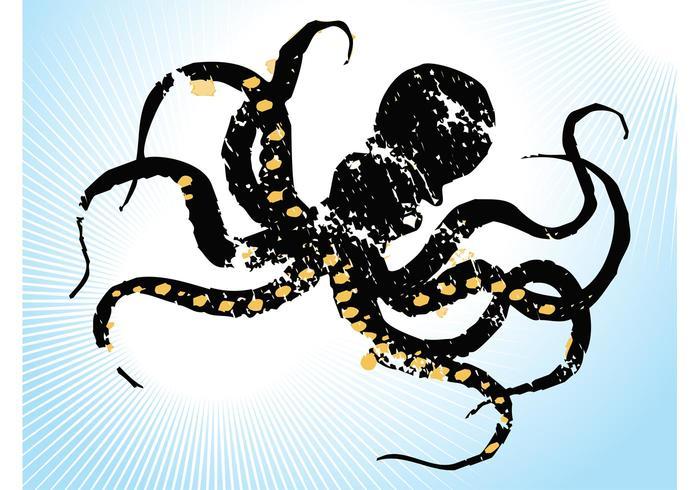 Sketchy Octopus