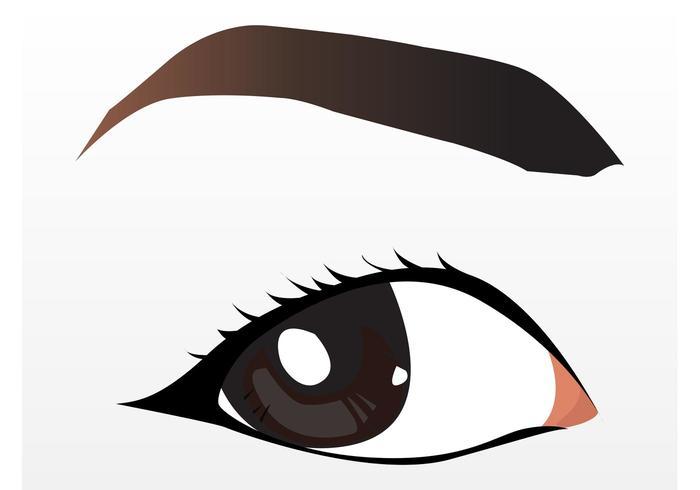 Joli oeil brun