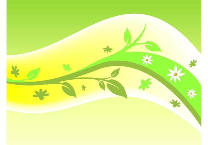 Planta Swoosh