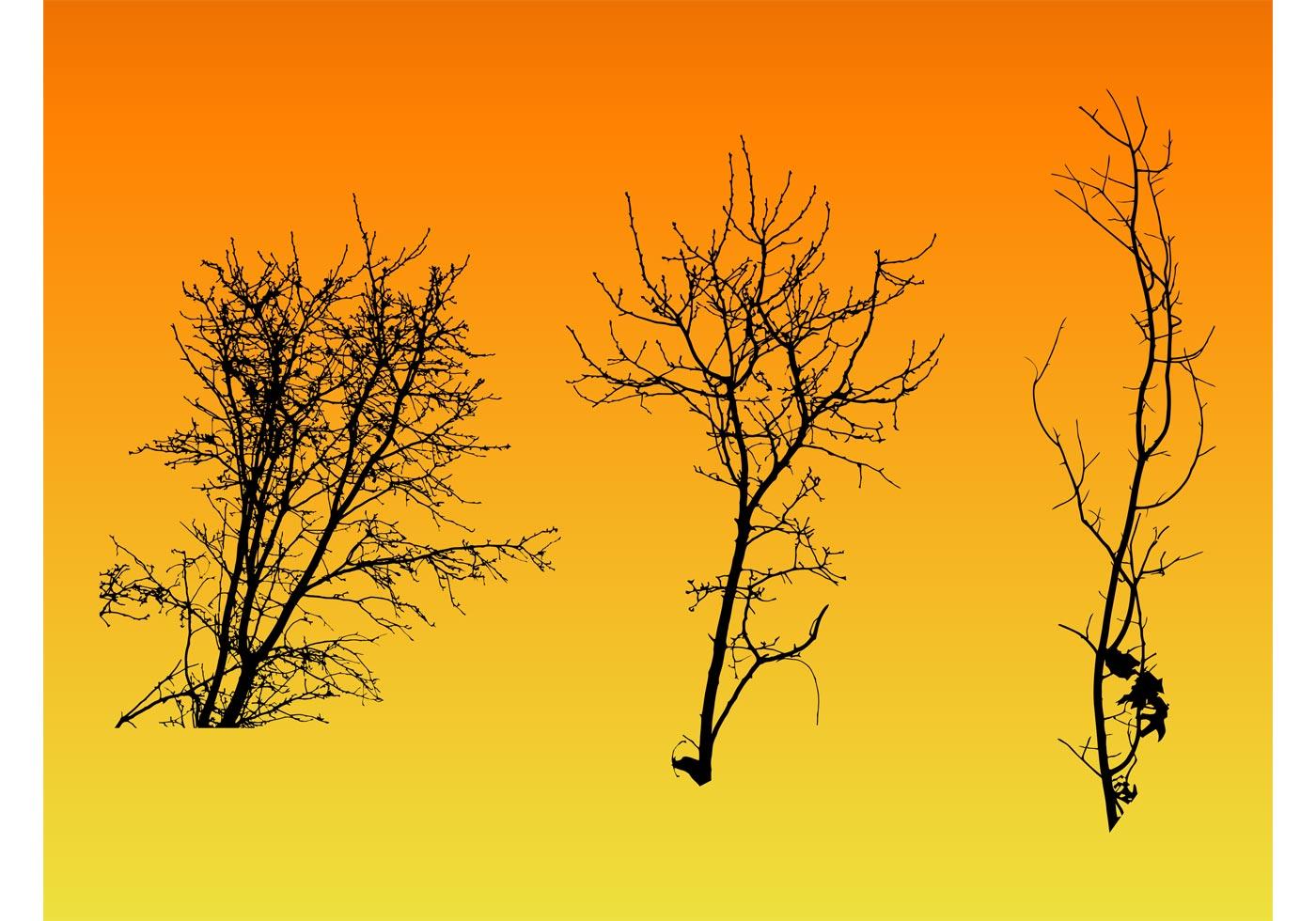 Vector Illustration Tree: (13712 Free Downloads