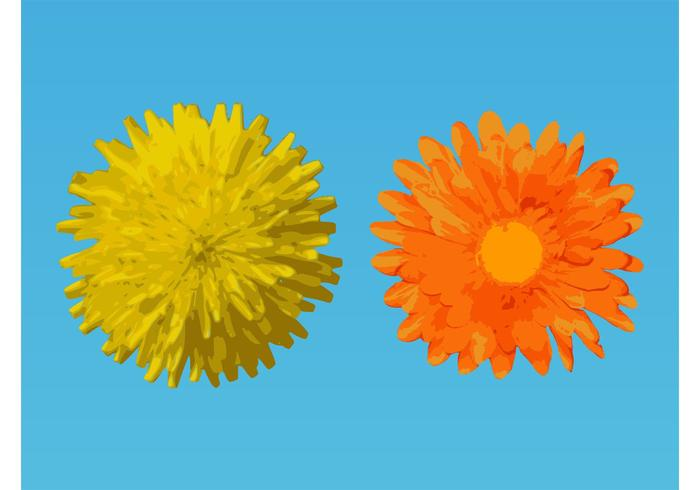 Vector Flower Designs