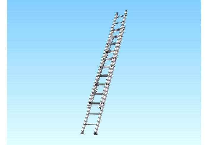 Vector Ladder