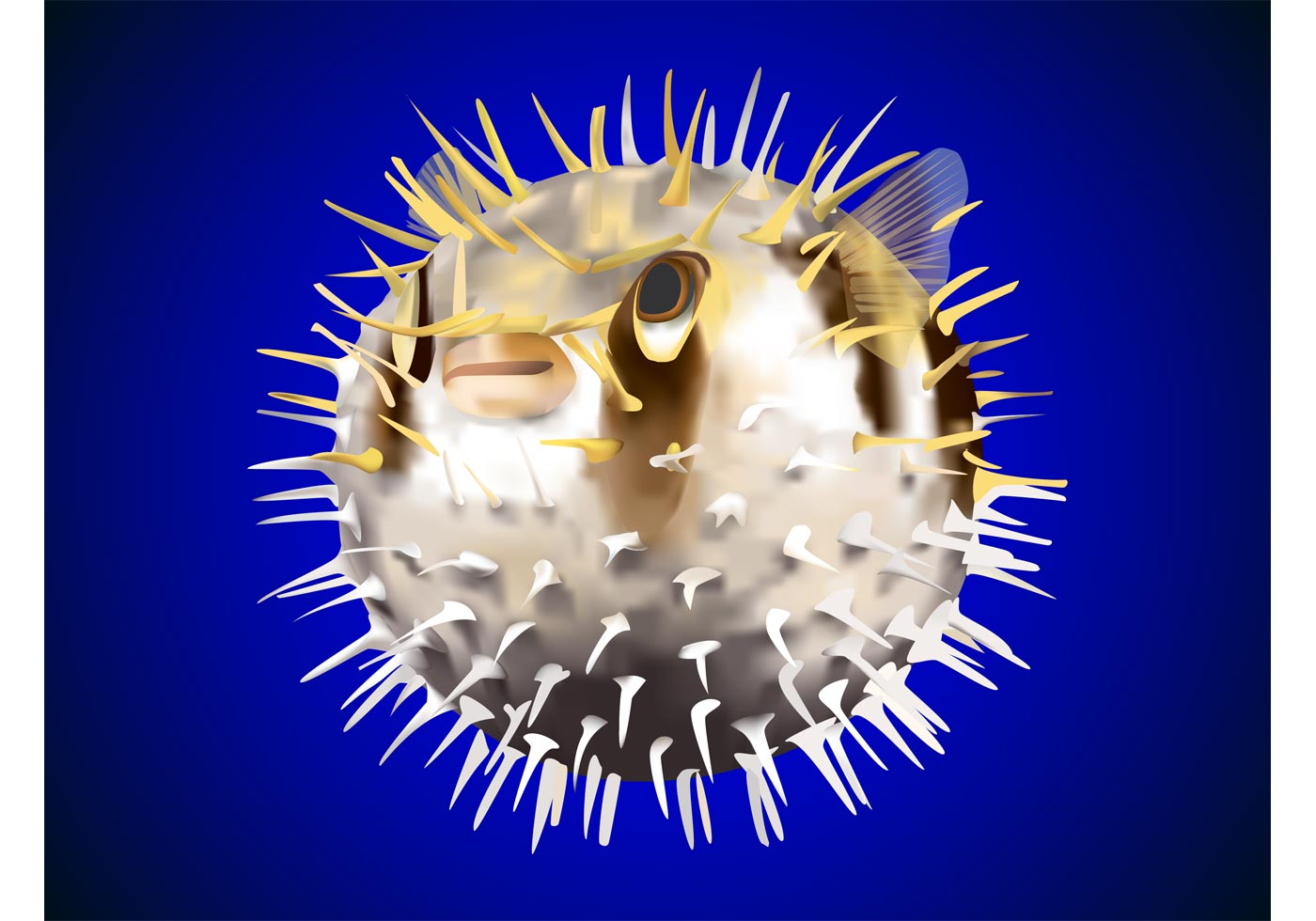Puffer Fish Vector - Download Free Vector Art, Stock ...