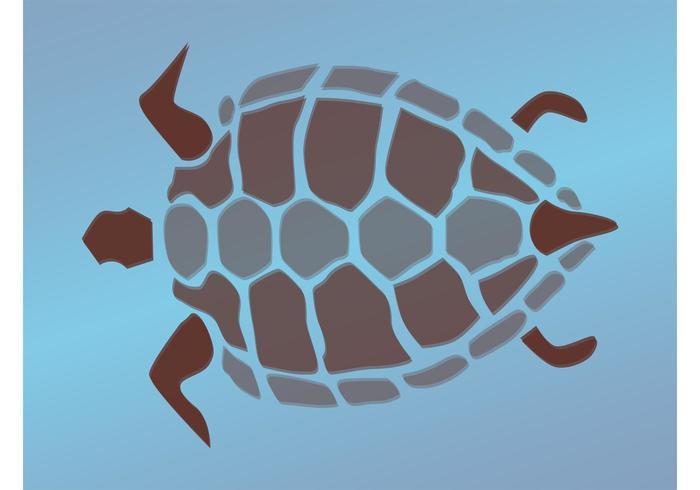 Turtle Graphics