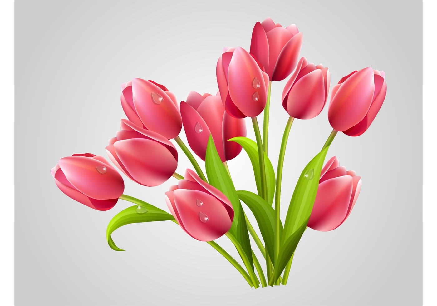 Fresh Pink Rose Flowers Realistic Tulips - Dow...