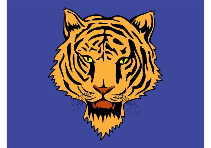 Clipart de tigre