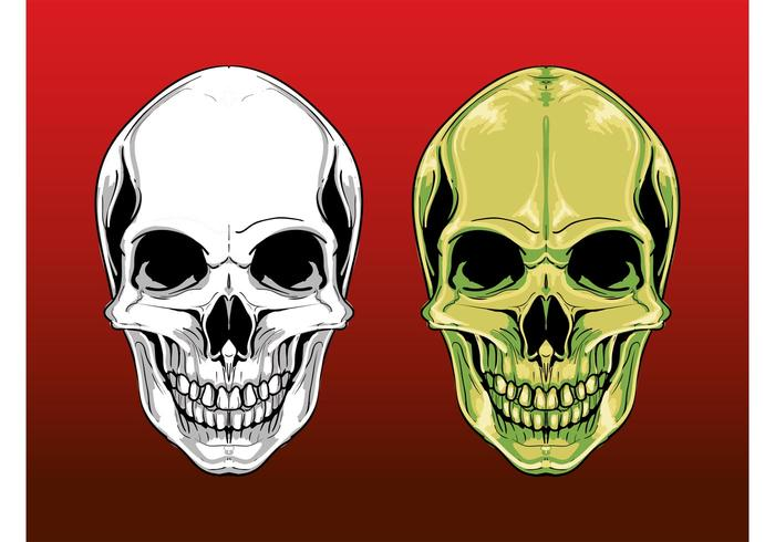 Scary Skull Graphics
