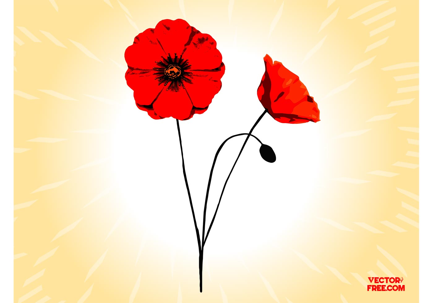 Poppy Flower Free Vector Art 11008 Free Downloads