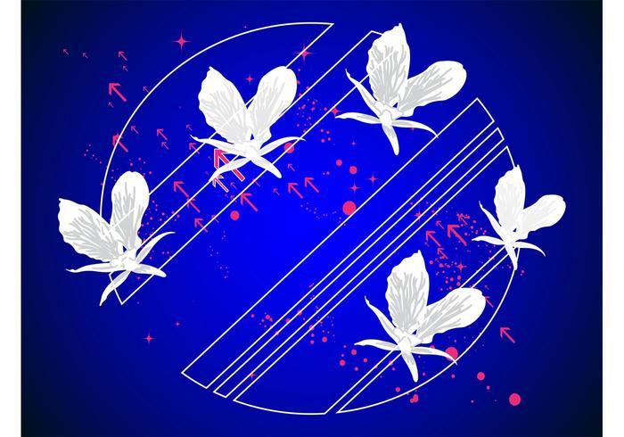 Background Decoration