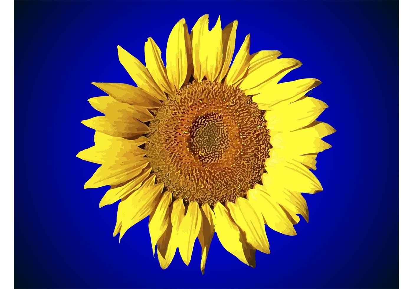 Sunflower Free Vector Art - (11371 Free Downloads)