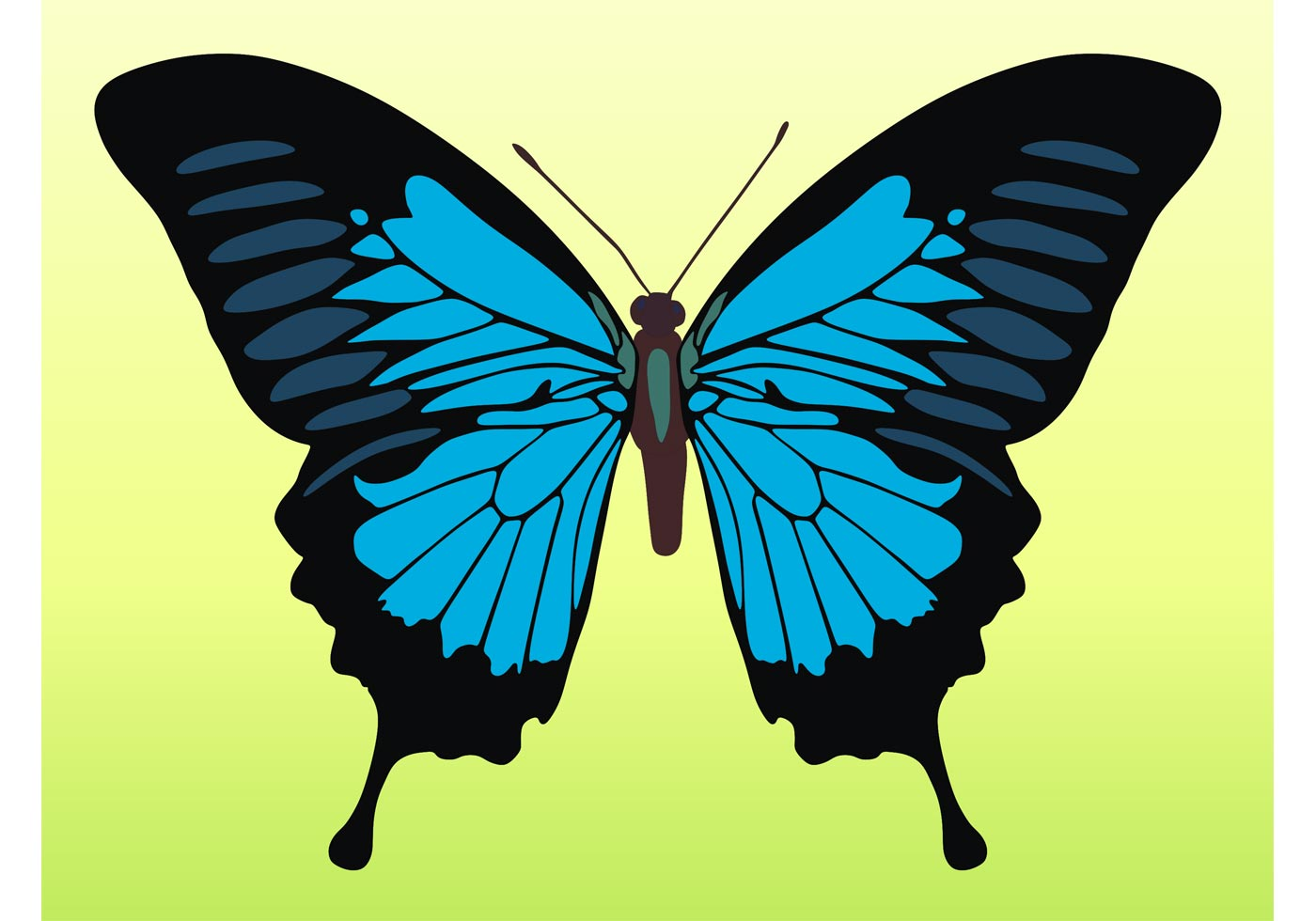 72487 Pretty Butterfly Vector on Trace The Shapes