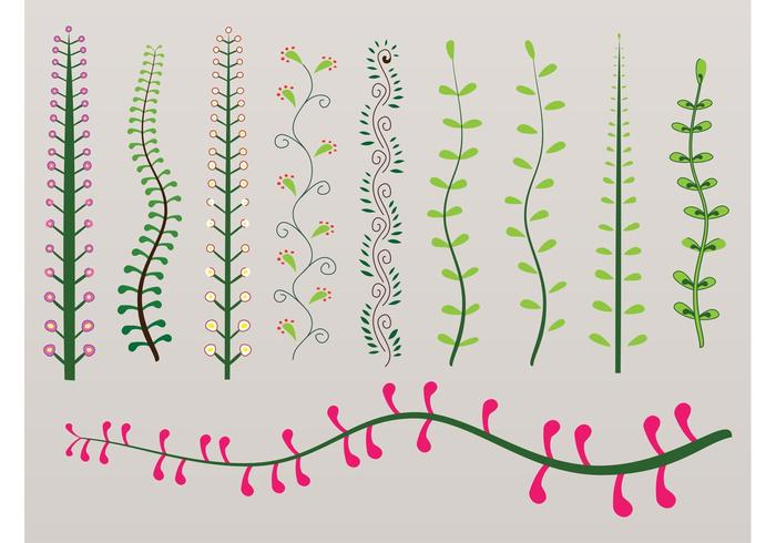 Colorful Plant Swirls