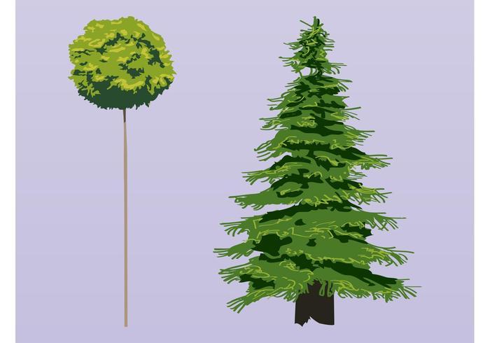 Trees Vectors
