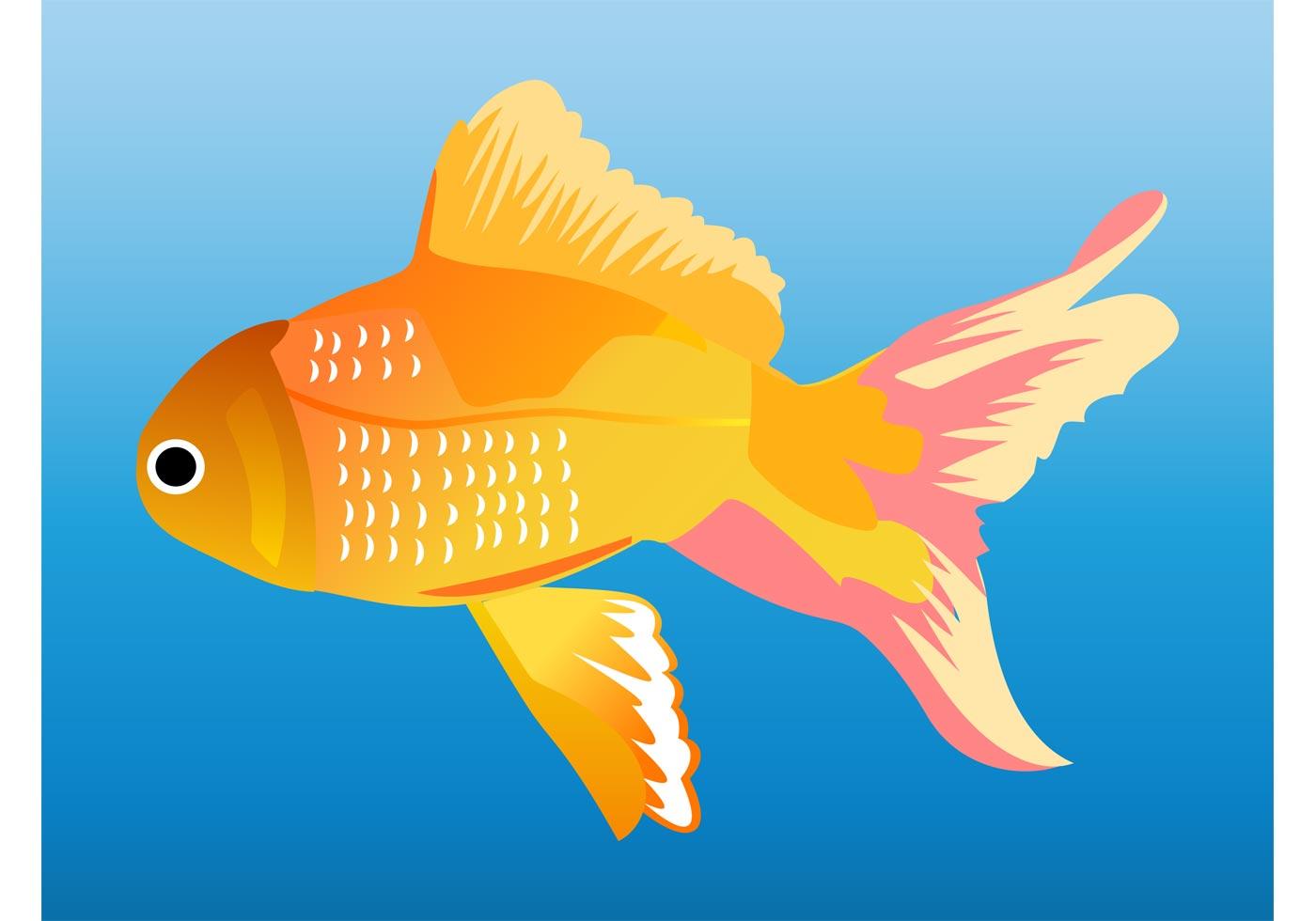 Goldfish Graphics - Download Free Vector Art, Stock ...