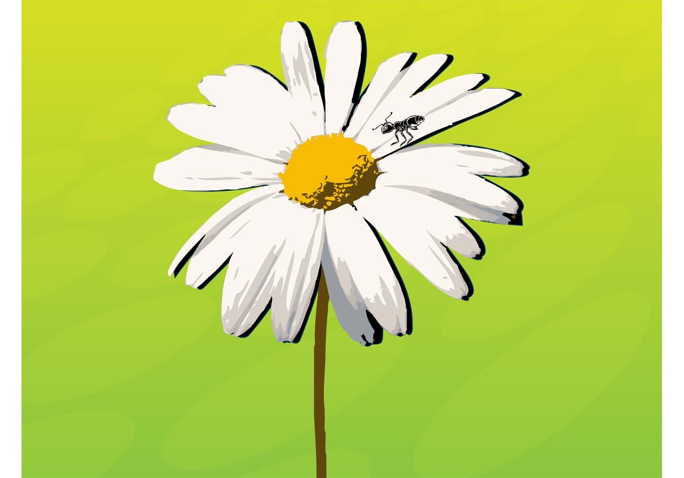 Daisy Flower Free Vector Art 8766 Free Downloads