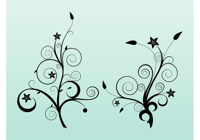 Star Flowers Vector