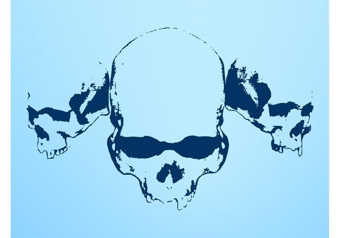 Crânios antigos